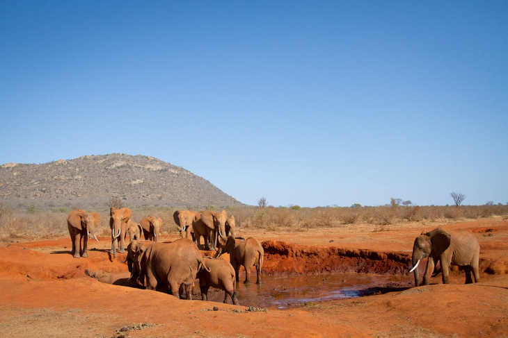 nairobi-tsavo-east-rep-kenya-safaris