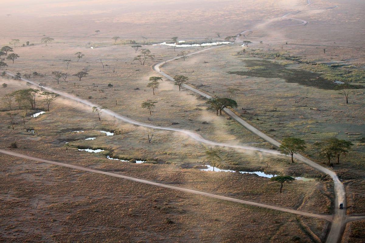 into-tanzania-rep-kenya-safaris