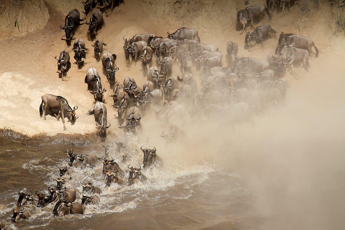 21-day-safari-package-rep-kenya-safaris